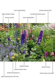 420 best garden u2013 plants images on pinterest garden plants