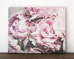 Pink Peonies Bedroom - amazon com 16x20 inch pink peony canvas wrap shabby chic wall