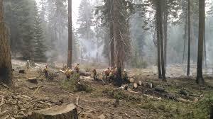 Wildfire Northern Colorado by A U201cwild U201dfire Experience