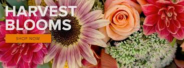 florist in nc florist flower delivery by colonial florist of