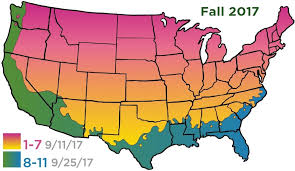 Us Zones For Gardening - cottage farms direct