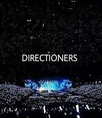 best fans in the world directioners are the best fans in the world