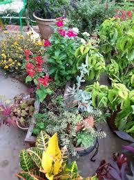 my porch garden hometalk