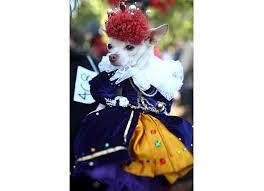 Queen Elizabeth Halloween Costume Halloween Costumes Pets