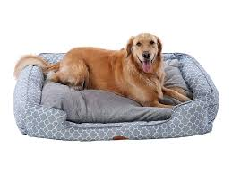 dog nesting bed dog beds 101 how to buy the perfect dog bed dog behaviors