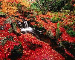 japanese flower garden wallpaper japan flower garden 3d wallpaper