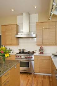 bamboo kitchen cabinets cost bamboo kitchen cabinet bamboo kitchen cabinets houzz