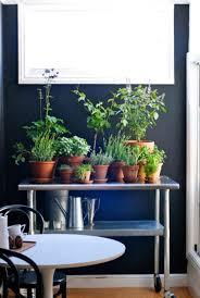terrace and garden gutter mount herbs garden 20 indoor herb
