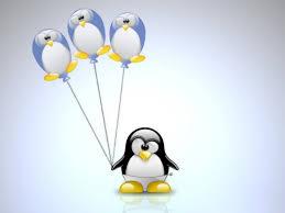 desktop cartoon penguin picture download