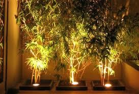how to design garden lighting garden lighting guide