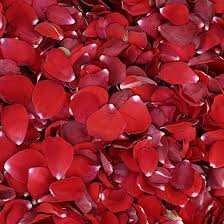 Where To Buy Rose Petals 112 Best Freeze Dried Rose Petals Images On Pinterest Freeze