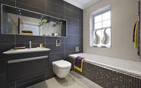 nice bathroom ideas nice bathroom designs home design ideas