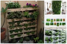 vertical garden the magic of the green wall