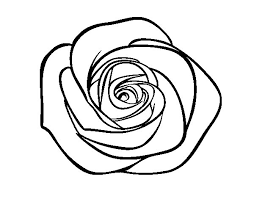 imagenes para colorear rosas dibujo de flor de rosa para colorear dibujos net