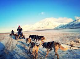 dog sledding in the arctic nextstopnorway