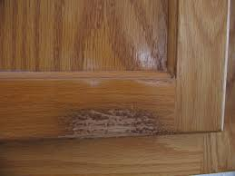 how to clean hardwood kitchen cabinets cleaning kitchen cabinets yes i d like cheese with