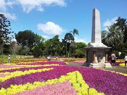 Australian Garden Flowers by Toowoomba Garden And Ghost Capital Of Australia Budget Car Rental
