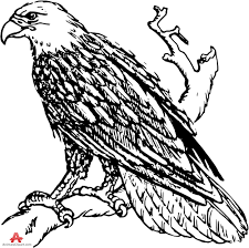 eagle outline clipart 52