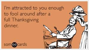 dating turkey thanksgiving ecards someecards