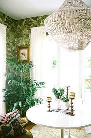 Jungle Home Decor Tropical Decor Hunde Foren