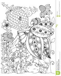 vector illustration zentangl butterfly in the flowers doodle