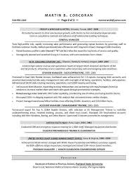 sales director resume examples director resume sales manager cv