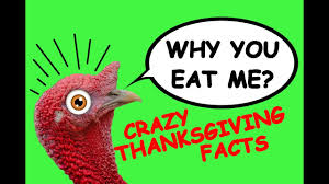 10 facts about thanksgiving we bet you did not happy