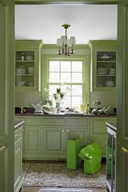 is green a kitchen color 15 best green kitchens ideas for green kitchen design
