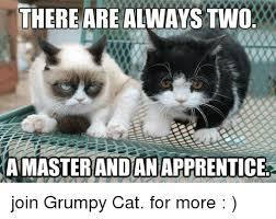 Grumpy Cat Coma Meme - 25 best memes about grumpy cat grumpy cat memes
