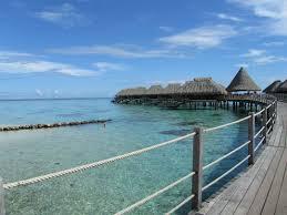 hilton moorea review french polynesia trip report