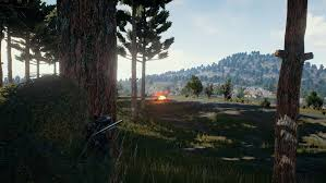 pubg review pubg review bombed in steam with more than 20 000 negative