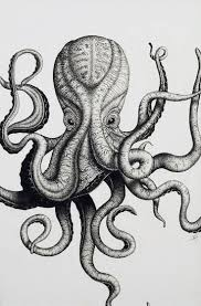 good drawing of an octopus 18 on with drawing of an octopus
