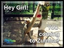 Zumba Meme - 3423 best we love zumba memes images on pinterest zumba quotes