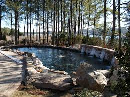 outdoor living spaces koizilla koi ponds water features pools