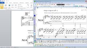 format lop word 2010 notation for ms word