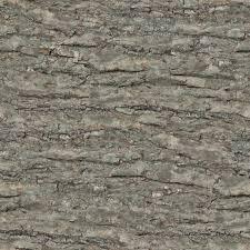 wood 25 tree bark plank seamless texture 2048x2048 gimp