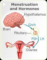 light period with clots about irregular periods 34 menopause symptoms com
