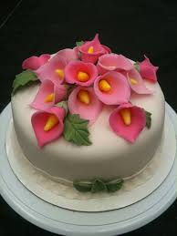 home design for beginners cool beginners cake decorating ideas style home design gallery and