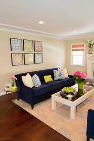 photos hgtv neutral transitional living room with navy blue sofa