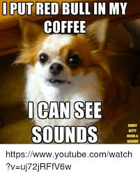 I Can See Sounds Meme - i put red bull in my coffee can see sounds kitty needs a