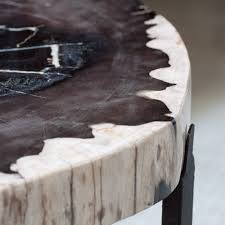 Petrified Wood Bench Black Petrified Wood Slice Table Mecox Gardens