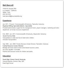 resume templates give your resume a professional look resume