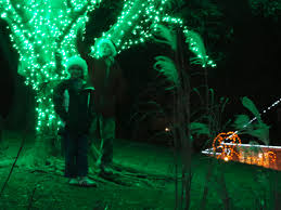 gwadzilla took the boys to the zoo lights a the national zoo the