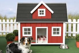 Dog House Plans for Dogs Best Dog House Plans for Dogs