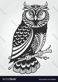 decorative owl royalty free vector image vectorstock