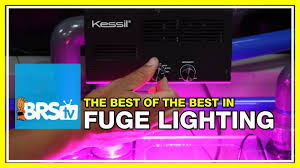 best led refugium light what does it take to light a refugium effectively brstv