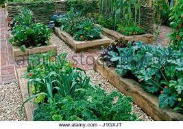 allotment vegetable garden with raised beds in an urban garden