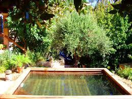 piscine petite taille photos de petites piscines en bois sans liner odyssea piscines