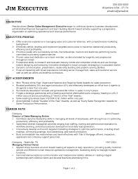 Best Resume Usa by Objective For Sales Resume Berathen Com