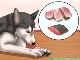 how to make allergy food for dogs 9 steps with pictures